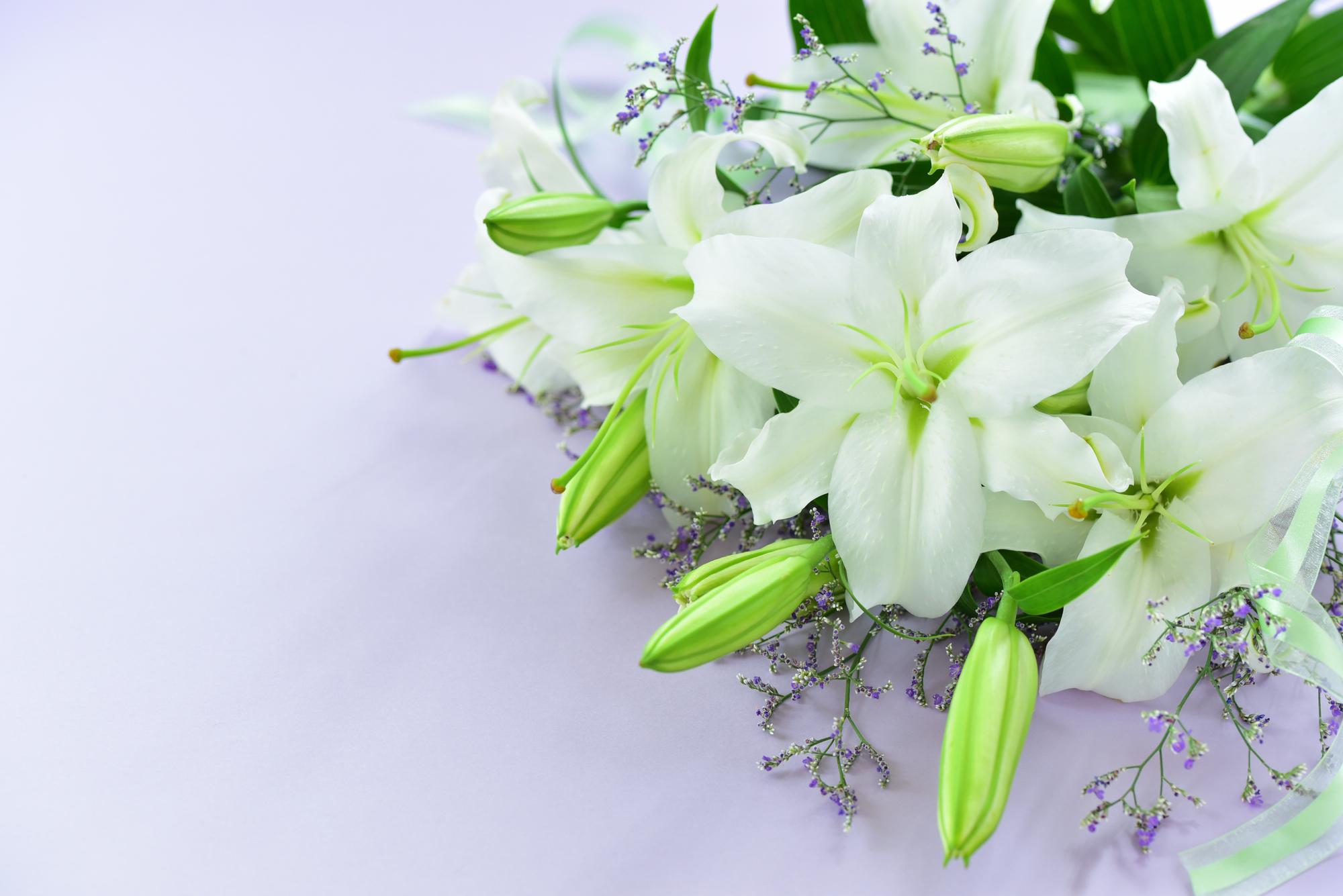 PrayForKyoani 献花